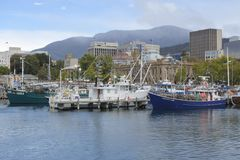 Fishing boats in Constitution Dock in Hobart the capital city of Tasmania, Australia. Tasmania produces more seafood by value than any other Australian State stock image