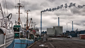 Fishing boats in a Danish harbour Stock Photos