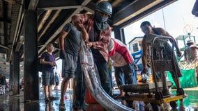 Fishing boats docked Chenggong Fishing Harbor remove fishing goo. Taitung, Taiwan - May 28, 2016 : Fishing boats docked Chenggong Fishing Harbor remove fishing Stock Image