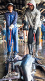 Fishing boats docked Chenggong Fishing Harbor remove fishing goo Royalty Free Stock Images