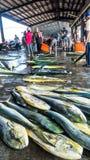 Fishing boats docked Chenggong Fishing Harbor remove fishing goo. Taitung, Taiwan - May 28, 2016 : Fishing boats docked Chenggong Fishing Harbor remove fishing Royalty Free Stock Images