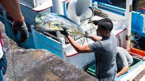 Fishing boats docked Chenggong Fishing Harbor remove fishing goo Stock Photos