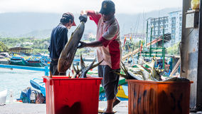 Fishing boats docked Chenggong Fishing Harbor remove fishing goo Stock Photo