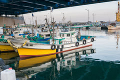 Fishing boats docked at a fishing village in Korea. Royalty Free Stock Photo