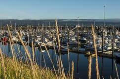 Fishing boats in habor stock photo