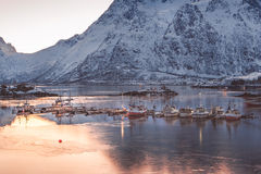Fishing boats at Hamnoy village harbour in winter, Lofoten Royalty Free Stock Images