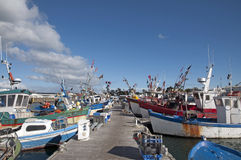 Fishing boats in a harbor Royalty Free Stock Image