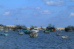 Fishing boats in the harbor of Alexandria Stock Images