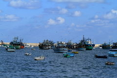 Fishing boats in the harbor of Alexandria Stock Photography