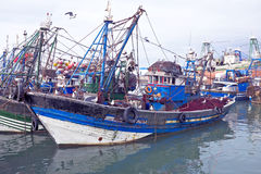 Fishing boats at the harbor from Essaouria. Essaouria is the mos Royalty Free Stock Images