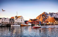 Fishing boats in harbour. Of Henningsvaer , Lofoten Islands, Norway Royalty Free Stock Photography