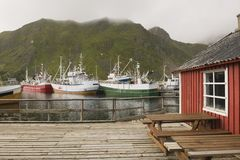 Fishing boats in harbour of Lofoten Islands Norway Stock Photos