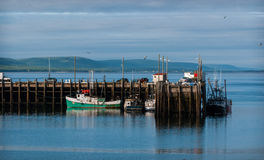 Fishing boats in the harbour at low tide in Digby, Nova Scotia. Nova Scotia late spring afternoon with evening approaching.   Boats tied up in low tide, in for Stock Photography