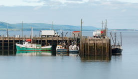 Fishing boats in the harbour at low tide in Digby, Nova Scotia. Nova Scotia late spring afternoon with evening approaching.   Boats tied up in low tide, in for Royalty Free Stock Photo