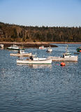 Fishing boats maine Stock Images