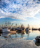 Fishing Boats in the Marina. Stock Image