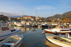 Fishing boats in Marina Kalimanj  in Tivat town on a sunny autumn day. Bay of Kotor, Montenegro Royalty Free Stock Photo