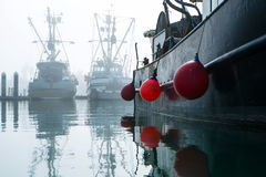 Safe Harbor. Fishing boats moored in harbor on a foggy day Stock Images