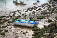 Fishing boats. Moored on the shore of the sea Royalty Free Stock Image
