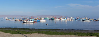 FISHING BOATS,PARACAS,PERU. Panorama of Peruvian fishermen and fishing boats.Preparing to bring home the catch of the day, Paracas, Peru, March 8,2013 Stock Images