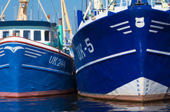 Fishing boats. Prow of some fishing boats in the harbor of Urk, Netherlands. Urk has by far the largest fishing fleet and fish processing industry in the Stock Images