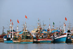 Fishing Boats in Sal River Mouth, near Mobor, GOA, (South) INDIA. Royalty Free Stock Photo