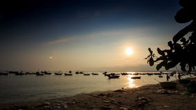 Fishing Boats in Sea Bay at Sunset from Beach in Vietnam. View of vietnamese fishing boats floating in calm sea bay from beach at sunset stock video