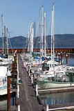 Fishing boats & small yachts in a marina. Stock Photos