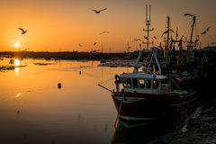 Fishing boats at sunset Royalty Free Stock Photo