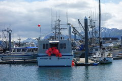 Fishing boats tied at the homer marina Royalty Free Stock Photography