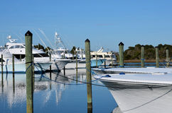 Fishing Boats Tied Poles Dock Marina Yachts royalty free stock image