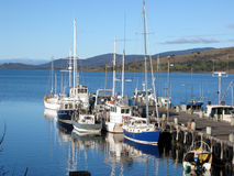 Fishing boats in tranquil harbor. Collection of fishing boats tied up at a jetty in Tasmania. Great weather Royalty Free Stock Photos
