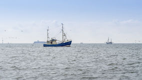 Fishing boats trawling Stock Images