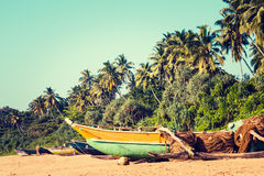 Fishing boats on a tropical beach with palm trees in the backgro. Fishing boats on a tropical beach with palm trees and mangrove in the background Stock Images