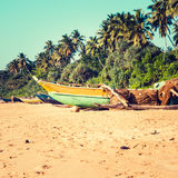 Fishing boats on a tropical beach with palm trees in the backgro. Fishing boats on a tropical beach with palm trees and mangrove in the background Royalty Free Stock Images