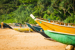 Fishing boats on a tropical beach with palm trees in the backgro. Fishing boats on a tropical beach with palm trees and mangrove in the background Royalty Free Stock Photography