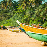 Fishing boats on a tropical beach with palm trees in the backgro. Fishing boats on a tropical beach with palm trees and mangrove in the background Royalty Free Stock Image