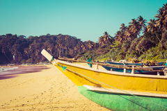 Fishing boats on a tropical beach with palm trees in the backgro. Fishing boats on a tropical beach with palm trees and mangrove in the background Royalty Free Stock Photo