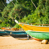 Fishing boats on a tropical beach with palm trees in the backgro. Fishing boats on a tropical beach with palm trees and mangrove in the background Stock Photography