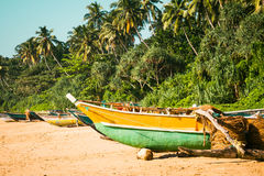 Fishing boats on a tropical beach with palm trees in the backgro. Fishing boats on a tropical beach with palm trees and mangrove in the background Stock Photo