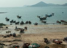 Fishing boats unload catch in Qingdao royalty free stock image