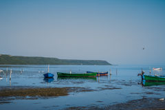 Fishing boats in the water. Lonely fishing boats in the calm water, reflections visible in the water and a bird flying. Clear blue sky and horizon, nobody in the Stock Images