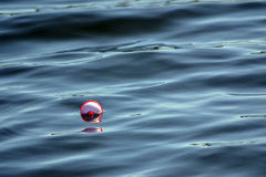 Fishing Bobber Floating In Water. Red and white fishing bobber floating in water on lake Royalty Free Stock Photos