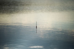 Fishing Bobber on the water. Stock Image