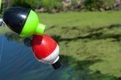 Fishing bobbers Stock Photos