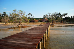Fishing bridge at Koh Mak Royalty Free Stock Image