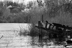 Fishing bridge. On the river near the reeds stock images
