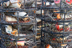 Fishing buoys. Cages of commercial fishing buoys Stock Photography