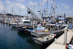 Fishing Business Boats. Professional and sport fishing boats tied up in harbor at a northern California marina Stock Photos
