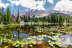 Fishing Butterfly Lake. People fishing a high mountain lake in the summer Stock Image
